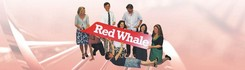 Red Whale: The new name for GP Update